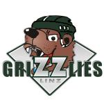 ASKÖ Grizzlies Linz